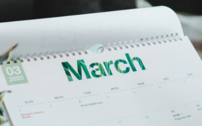 March 2019 Monthly Software Update News